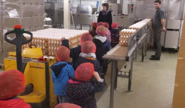 Besuch der gelben Gruppe auf dem Eierhof